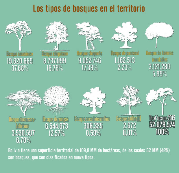 tipos-bosques-LARAZON